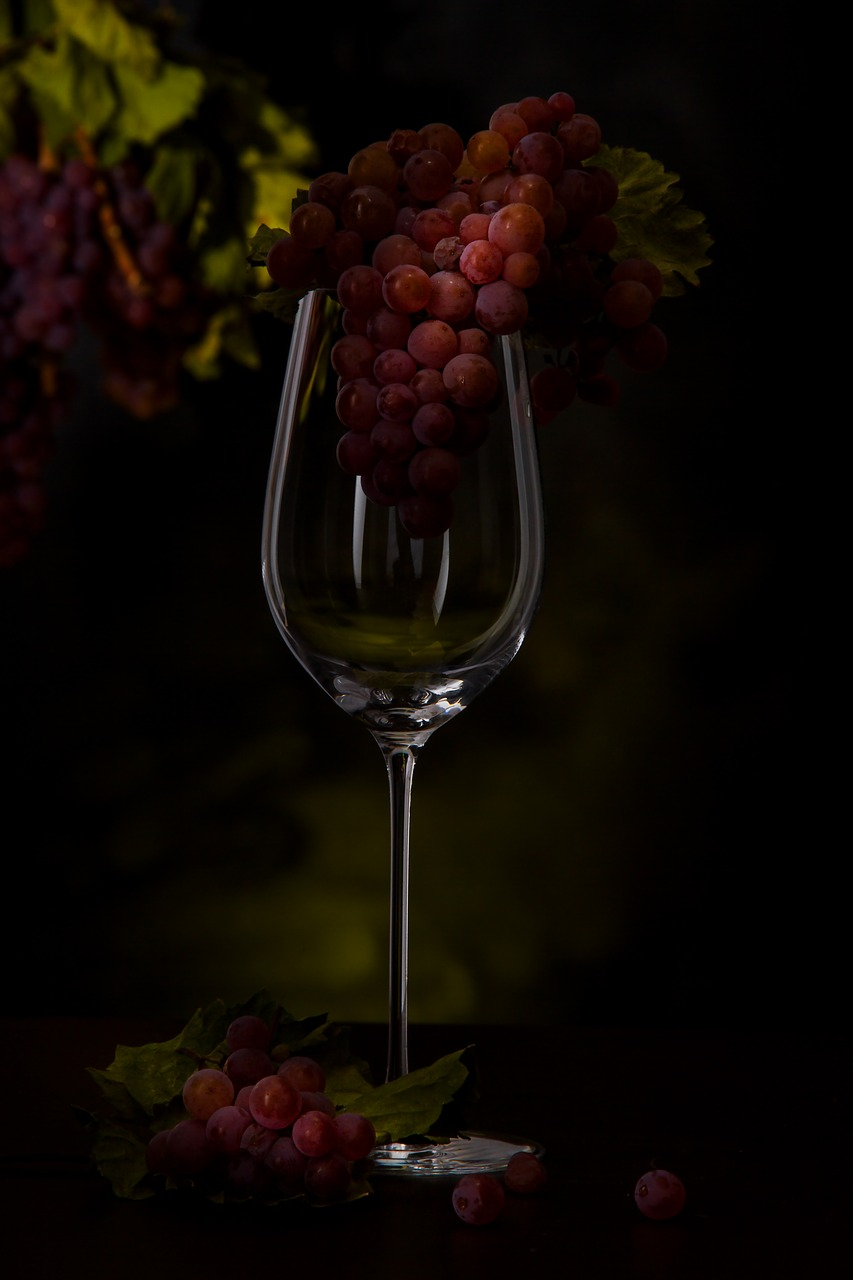 grapes, wine glass, vines